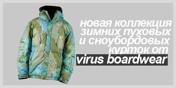 virus2010